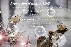 Cartel Promoción Navidad 2017 face